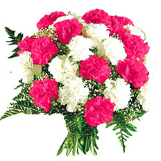 Order bouquet of white and pink carnations | delivery to ,  Ukraine