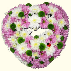 Kiev florists and Chrysanthemum Heart delivery.