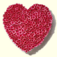 Heart</strong><br/>of roses From $179.99