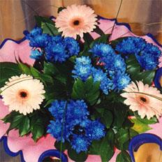 Flower Bouquets, Flower arrangement with Gerbera and Chrysanthemum