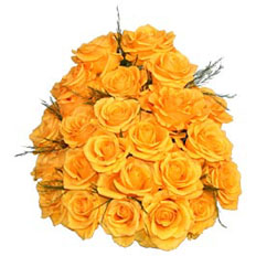 Local roses delivery | 21 yellow roses to ,  Ukraine