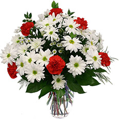 Delivery mixed Carnations and Chrysanthemum on Mother Day, Teacher Day, St. Patrick Day to Ukriane
