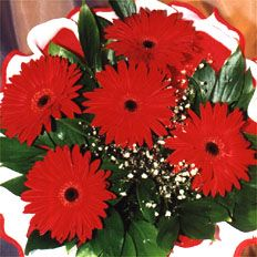 Flower Bouquets, Red Gerbera bouquet