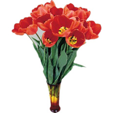 Spring catalog | Send Bouquet of red Tulips to Ukraine