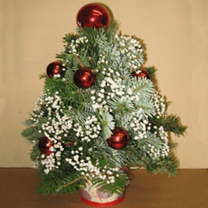 Send flowers and new year gifts to Ukraine, Kiev, other cities of Ukraine.