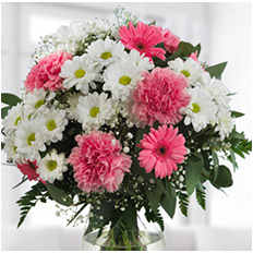 Send carnations and Chrysanthemums bouquet to Ukraine