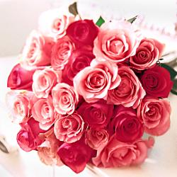 Mixed pink roses delivery all over Ukraine.