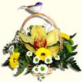 К: Корзина с Орхидеей