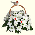 K: Chrysanthemum Basket