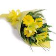 Mixed bouquet Gerbera + Lilies