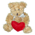 Plush Bear With a Heart